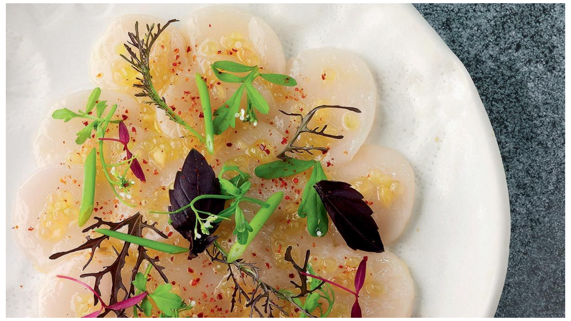 Carpaccio of scallops with citrus fruits