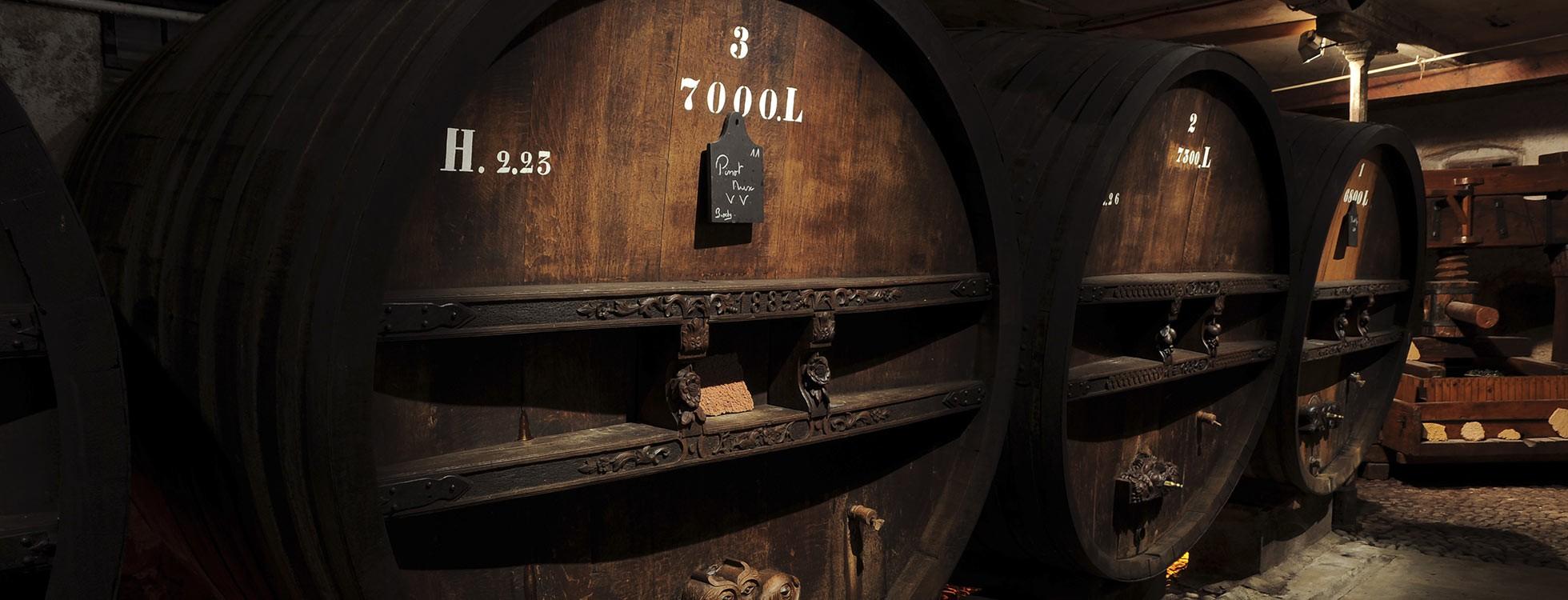 Vins blancs d'Alsace: les nouveaux chouchous des Français?