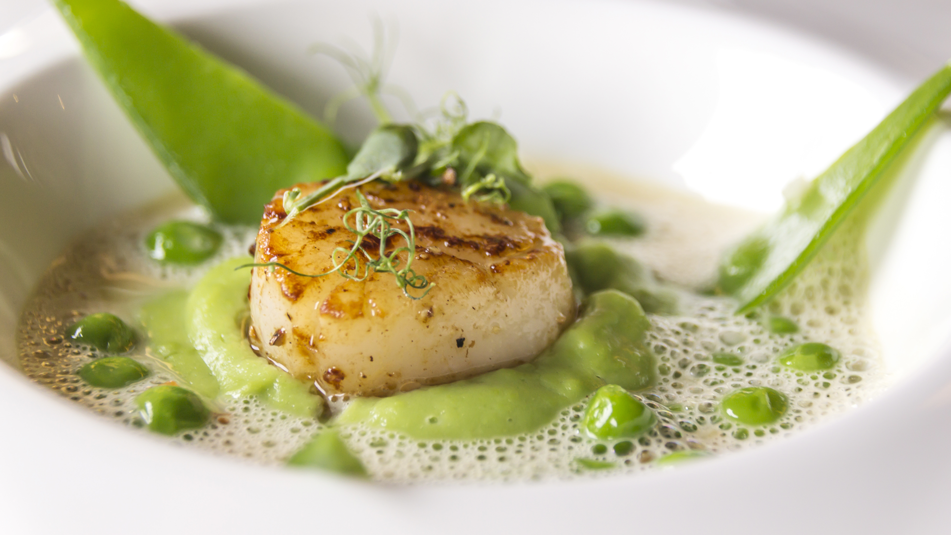 Snacky scallops and a cream of peas with ginger